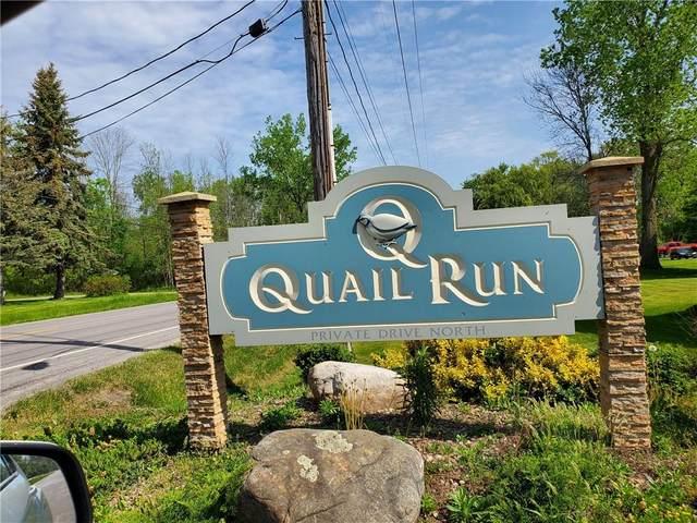 1 Quail Run, Greece, NY 14468 (MLS #R1338339) :: Robert PiazzaPalotto Sold Team