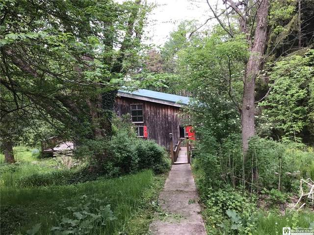 1325 Clymer Hill Road, Clymer, NY 14724 (MLS #R1338772) :: Robert PiazzaPalotto Sold Team