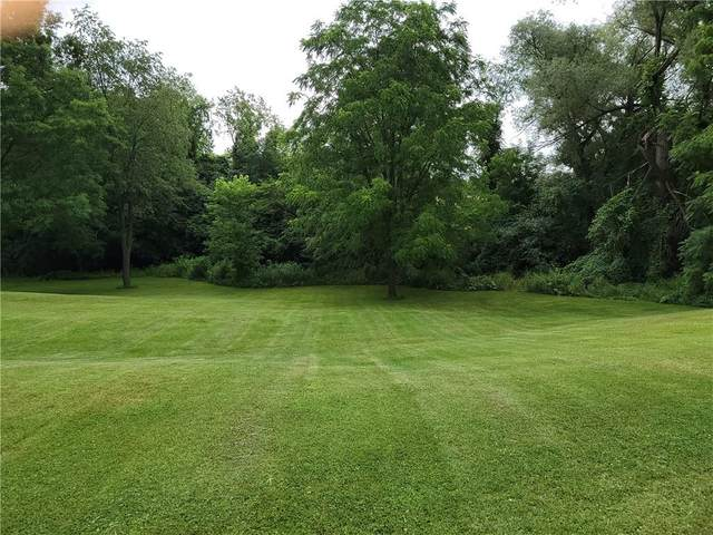0 Upper Mt Morris Road, Leicester, NY 14481 (MLS #R1348432) :: Robert PiazzaPalotto Sold Team