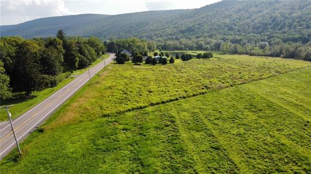 0 State Route 64, Bristol, NY 14424 (MLS #R1352205) :: BridgeView Real Estate