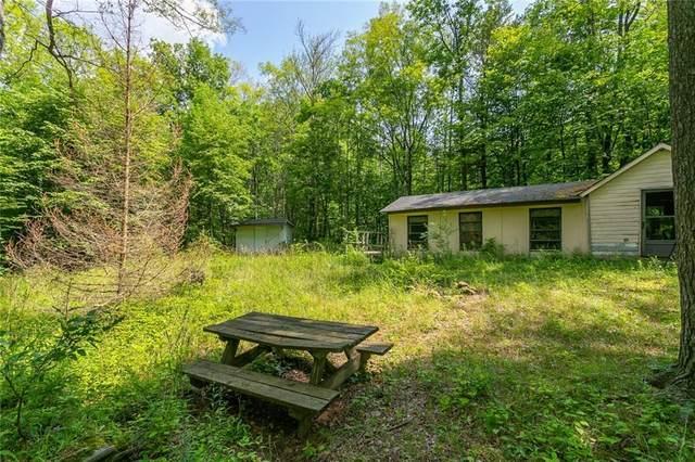 4565 Kear Road, Bristol, NY 14424 (MLS #R1353000) :: Serota Real Estate LLC