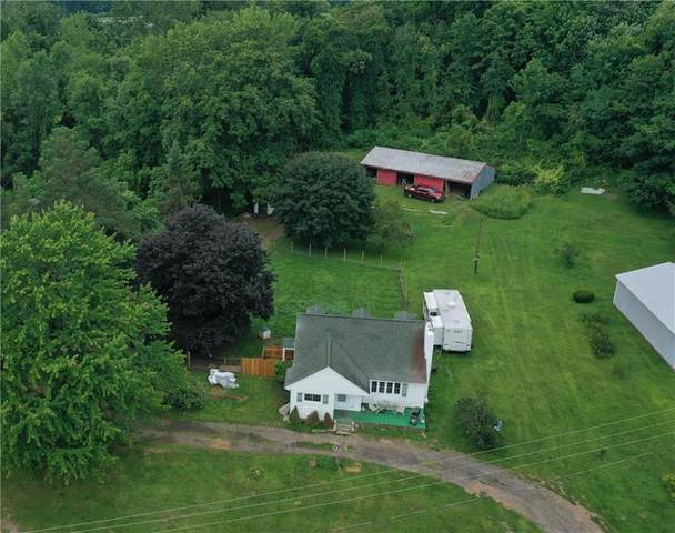 6071 Buerman Road, Sodus, NY 14551 (MLS #R1358203) :: Serota Real Estate LLC