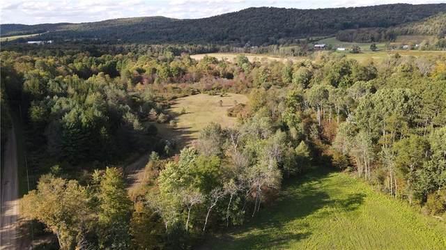 00 Dug Road, Sharon, PA 16748 (MLS #R1368073) :: Serota Real Estate LLC