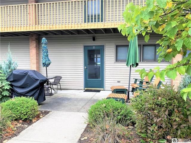 22 Mohawk Drive, Chautauqua, NY 14728 (MLS #R1372377) :: Serota Real Estate LLC