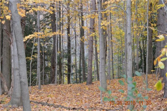 0 Co Route 90 Road, Ellisburg, NY 13636 (MLS #S1010029) :: Thousand Islands Realty