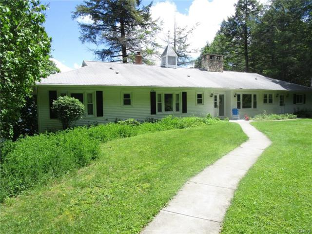 109 Sunrise Hill Rd, Niles, NY 13152 (MLS #S1028802) :: The Chip Hodgkins Team