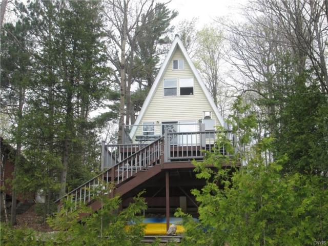 8709 N Shore Road, Diana, NY 13648 (MLS #S1042041) :: Thousand Islands Realty