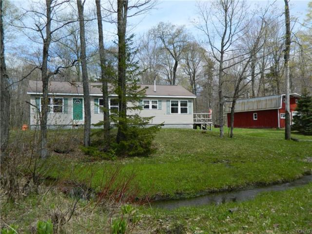 5447 Salmon River Road, Montague, NY 13367 (MLS #S1044657) :: Thousand Islands Realty