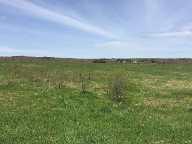 2149 State Route 26, West Turin, NY 13325 (MLS #S1045444) :: The Chip Hodgkins Team
