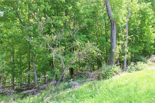 0 State Route 48 Road, Minetto, NY 13126 (MLS #S1047517) :: Thousand Islands Realty