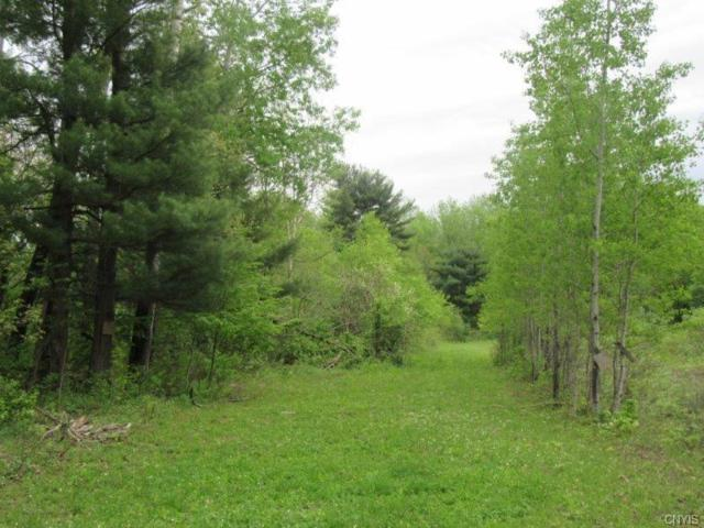 00 Berry Drive, Lorraine, NY 13659 (MLS #S1053892) :: Thousand Islands Realty