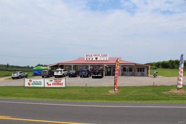 10979 Ridge Road, Huron, NY 14590 (MLS #S1053954) :: Thousand Islands Realty