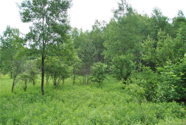 Lot 3 Purdy Road, Madison, NY 13402 (MLS #S1058789) :: Thousand Islands Realty