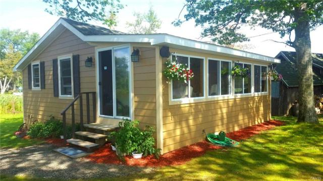 174 Hoffman Road, Tully, NY 13159 (MLS #S1061229) :: Updegraff Group