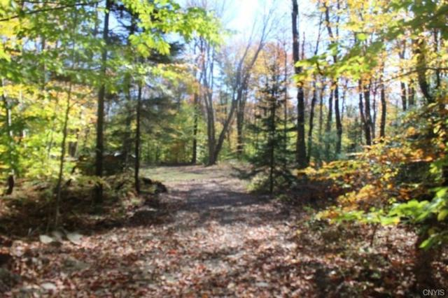 Lot 3 Fox Brook Road, Redfield, NY 13437 (MLS #S1072097) :: Thousand Islands Realty