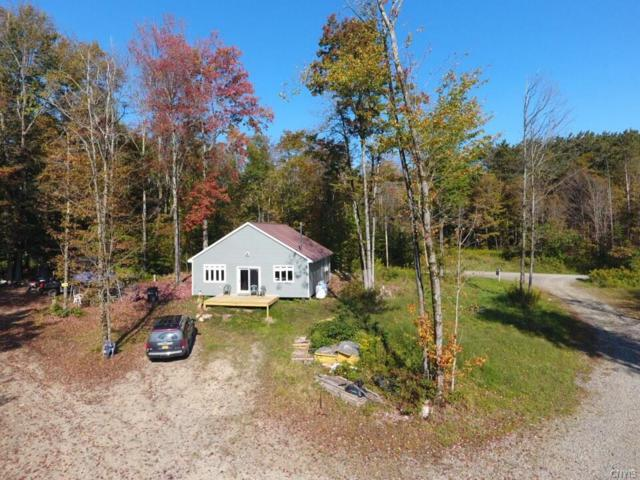 4350 Potter Hill Road, Taylor, NY 13040 (MLS #S1074455) :: Thousand Islands Realty
