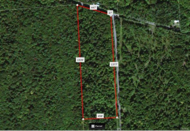 00 Kirch Hill Road, Greig, NY 13345 (MLS #S1076885) :: Thousand Islands Realty