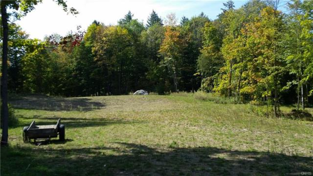 0 State Route 3, Diana, NY 13665 (MLS #S1077881) :: The Rich McCarron Team