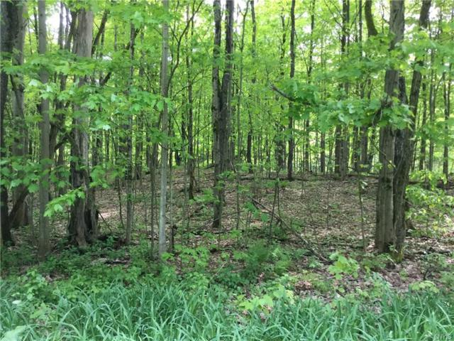 0 Brownell Drive, Williamstown, NY 13302 (MLS #S1088463) :: Updegraff Group