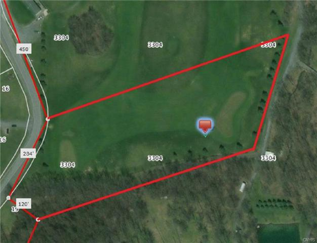 3304 Clinton Road, Brutus, NY 13166 (MLS #S1092269) :: Updegraff Group