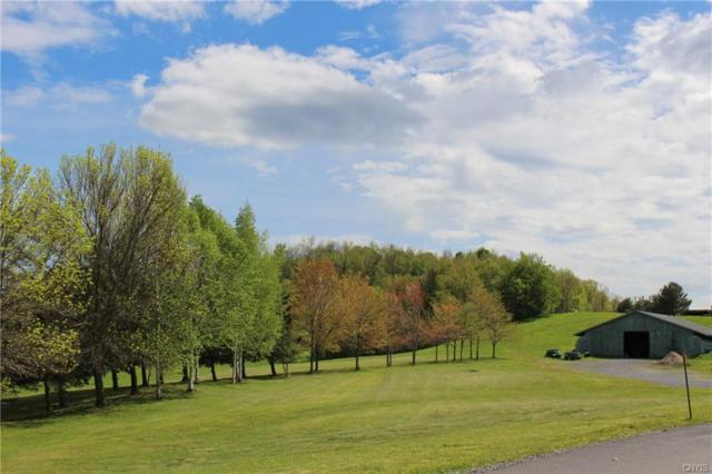 3304 Clinton Road, Brutus, NY 13166 (MLS #S1092271) :: Updegraff Group