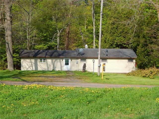 16224 Irwin Road, Sterling, NY 13126 (MLS #S1094019) :: The CJ Lore Team | RE/MAX Hometown Choice