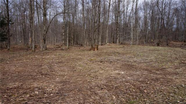 0 Kaine Road, Williamstown, NY 13302 (MLS #S1104601) :: Thousand Islands Realty