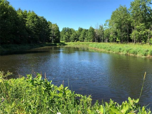 Lot 7 & 8 S Rim Drive, Lorraine, NY 13659 (MLS #S1112044) :: Updegraff Group