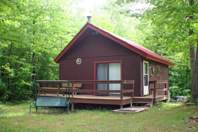 6850 Chief Canesque Lane, Springwater, NY 14560 (MLS #S1112163) :: Thousand Islands Realty