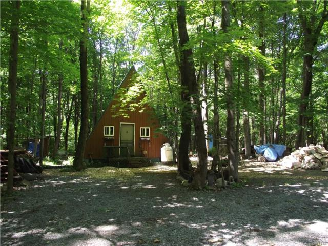 5317 Ziegler Road, Leyden, NY 13309 (MLS #S1117328) :: Thousand Islands Realty