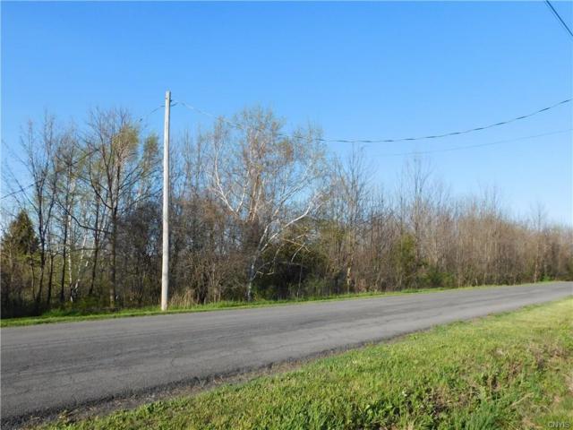 3438/3452 Fox Road, Onondaga, NY 13215 (MLS #S1119557) :: Updegraff Group