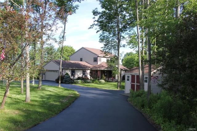 6947 Horton Road, Hamilton, NY 13346 (MLS #S1125403) :: Thousand Islands Realty