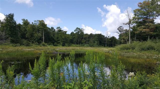 00 New Scriba Drive, Boylston, NY 13144 (MLS #S1125629) :: Thousand Islands Realty