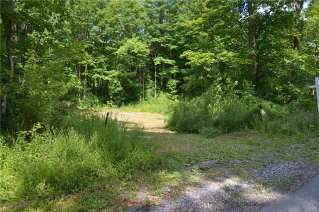 0 Route 13 Road, Fenner, NY 13037 (MLS #S1131660) :: Thousand Islands Realty
