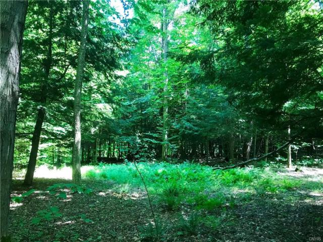 Lot Yuhas Drive, Sterling, NY 13156 (MLS #S1137126) :: Thousand Islands Realty