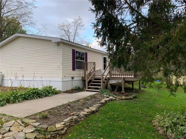 6036 Filmore Road, Summerhill, NY 13118 (MLS #S1138873) :: Thousand Islands Realty