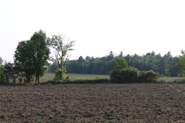 0 Fredericks Road, Theresa, NY 13691 (MLS #S1142073) :: BridgeView Real Estate Services