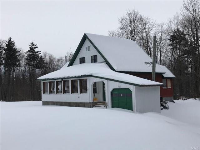 1631 Apple Road, Lewis, NY 13489 (MLS #S1151955) :: Thousand Islands Realty