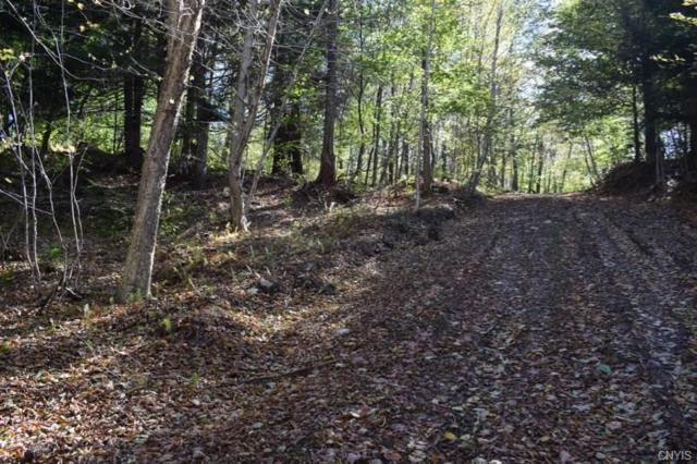 Off Apache Springs Road, Boylston, NY 13083 (MLS #S1153330) :: Thousand Islands Realty