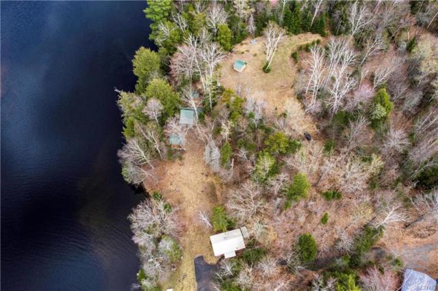 337B Big Brook Road, Indian Lake, NY 12842 (MLS #S1158717) :: BridgeView Real Estate Services