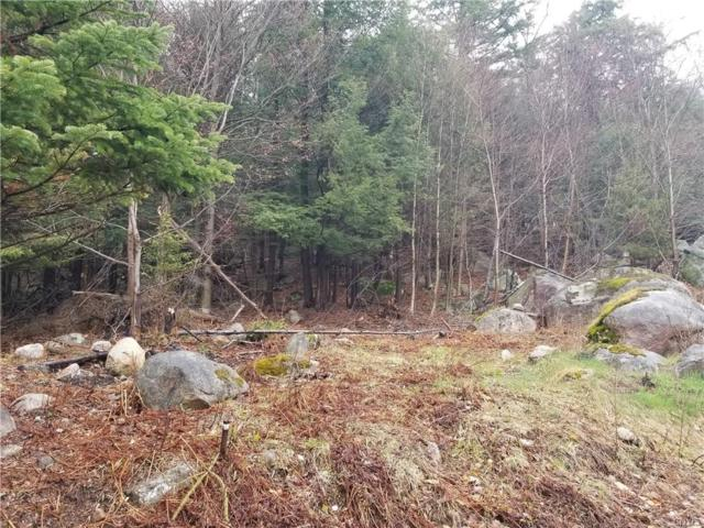 245 State Route 28 Highway, Inlet, NY 13360 (MLS #S1169185) :: The Glenn Advantage Team at Howard Hanna Real Estate Services