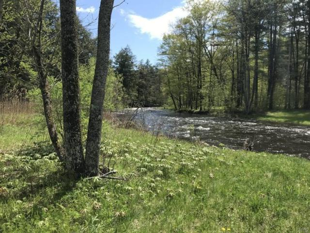 00 Wagners Hollow Road, Palatine, NY 12068 (MLS #S1170297) :: Thousand Islands Realty