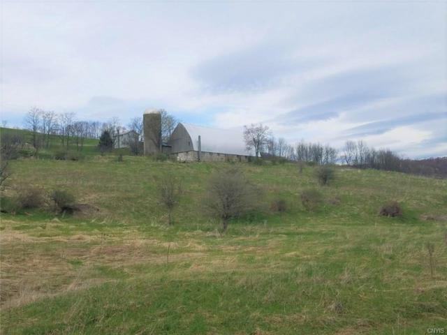 00 County Route 84, Troupsburg, NY 14885 (MLS #S1170589) :: Updegraff Group