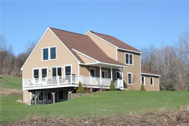 7198 Horton Road, Hamilton, NY 13346 (MLS #S1173026) :: Robert PiazzaPalotto Sold Team