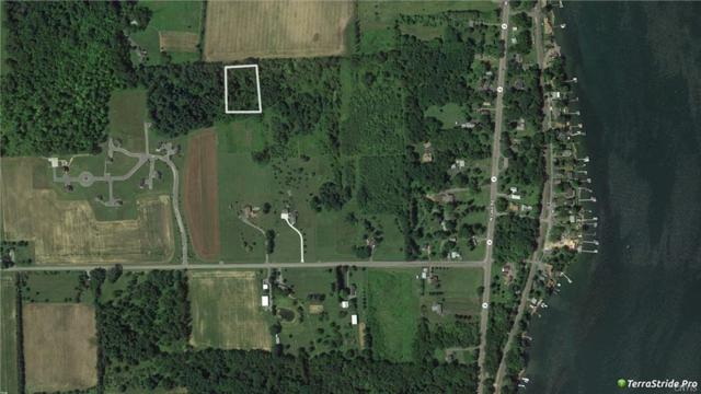 Lot 2 Armstrong Road, Geneva-Town, NY 14456 (MLS #S1173121) :: The Rich McCarron Team