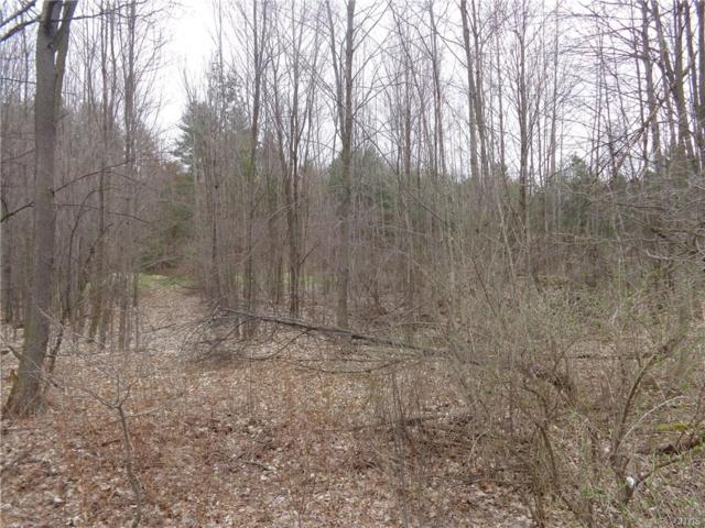 0000 Wagner Road, New Bremen, NY 13367 (MLS #S1183311) :: BridgeView Real Estate Services