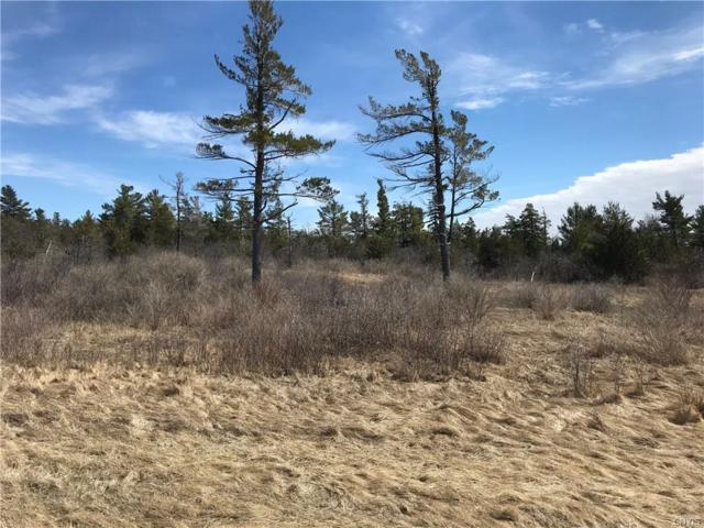 25560 Nys Route 180, Brownville, NY 13615 (MLS #S1183576) :: The Chip Hodgkins Team