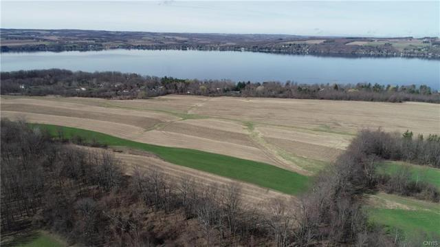 0 Collard Rd South, Spafford, NY 13152 (MLS #S1187324) :: Robert PiazzaPalotto Sold Team
