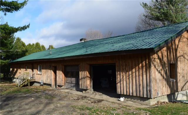 2012 Dryden Road, Dryden, NY 13068 (MLS #S1190330) :: Thousand Islands Realty