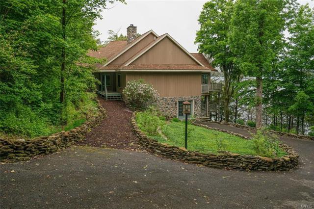 39 Lillibridge Ln/Pvt, Hammond, NY 13646 (MLS #S1193292) :: Robert PiazzaPalotto Sold Team